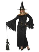 Elegant Witch Costume Plus Size for Adults