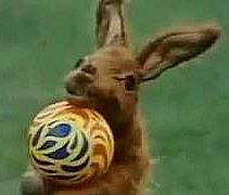 Hartley Hare playing with a ball in Pipkins