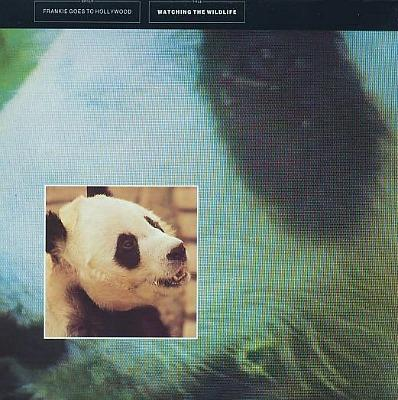 Watching The Wildlife - panda sleeve - Frankie Goes To Hollywood