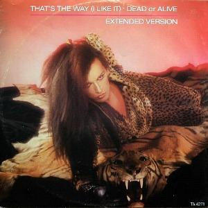 Dead Or Alive - That's The Way (I Like It) 12