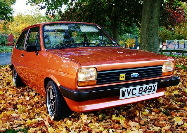 Autumnal Brown Ford Fiesta Mk1 amongst the leaves