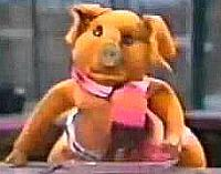 Pig with the brummie accent in Pipkins
