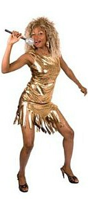 Tina Turner Fancy Dress Costumes